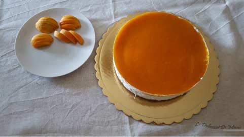 preparazione della cheesecake con coulis di albicocche senza burro passo 17